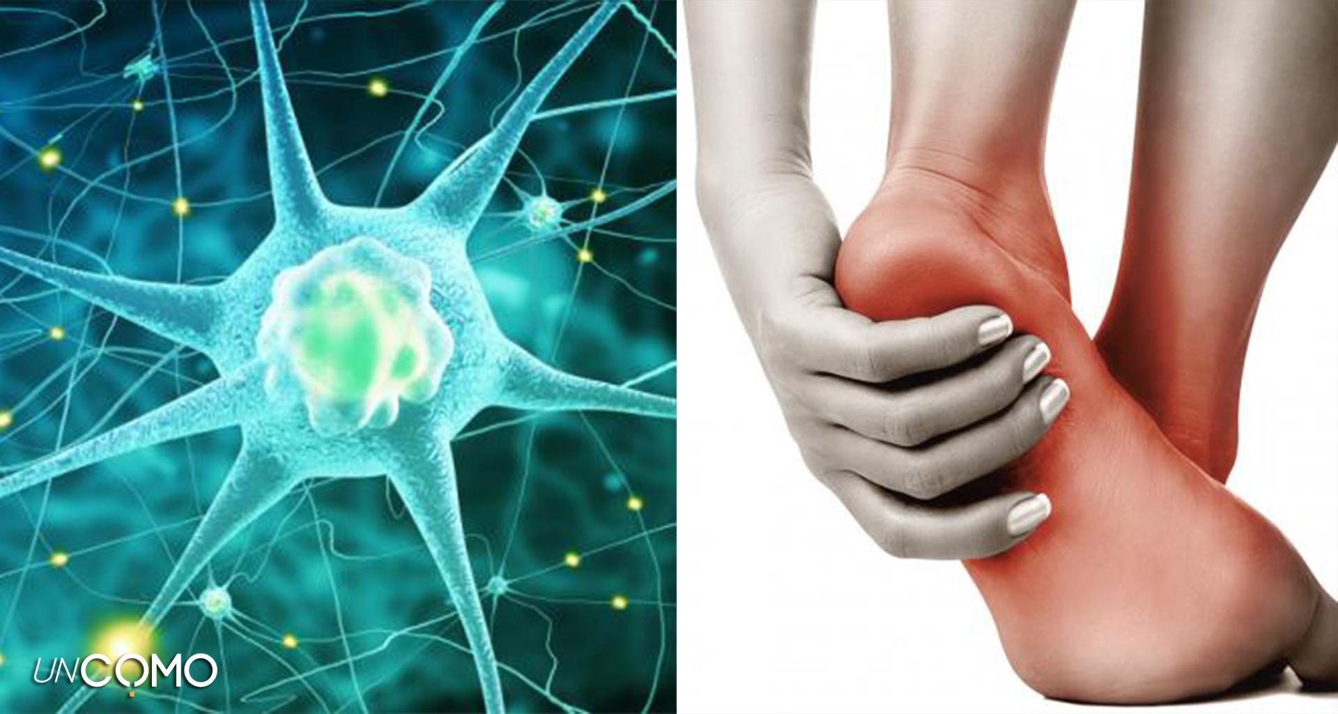 poate neuropatia periferică provoacă pierderea în greutate